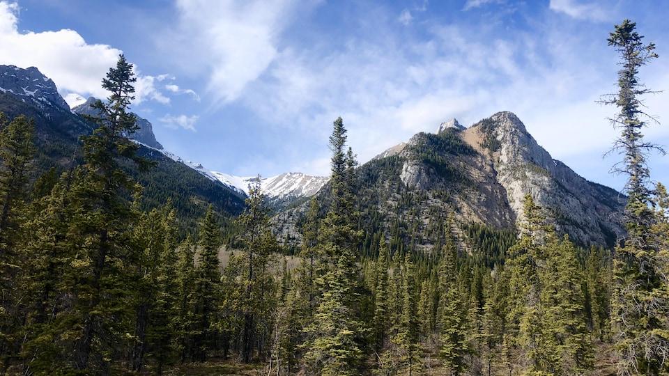 Des montagnes dans le parc provincial de Kananaskis.