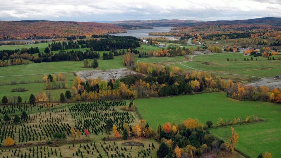 Vue en drone du paysage agricole et forestier.