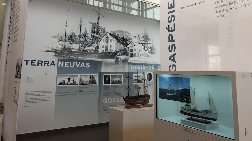 Des maquettes de navire sont exposées dans une salle d'exposition du Musée.