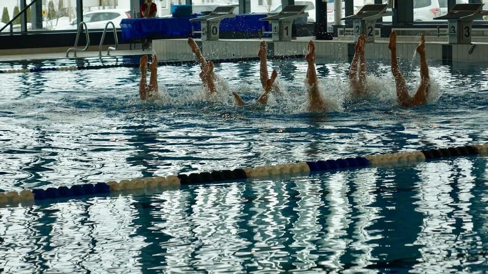 Des nageuses ont les jambes sorties de l'eau, en chandelle