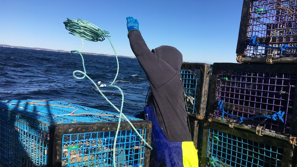 Un pêcheur de homard au large de Sambro, en Nouvelle-Écosse.