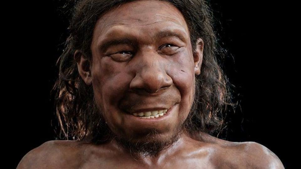 Reconstitution du visage d'un Néandertalien