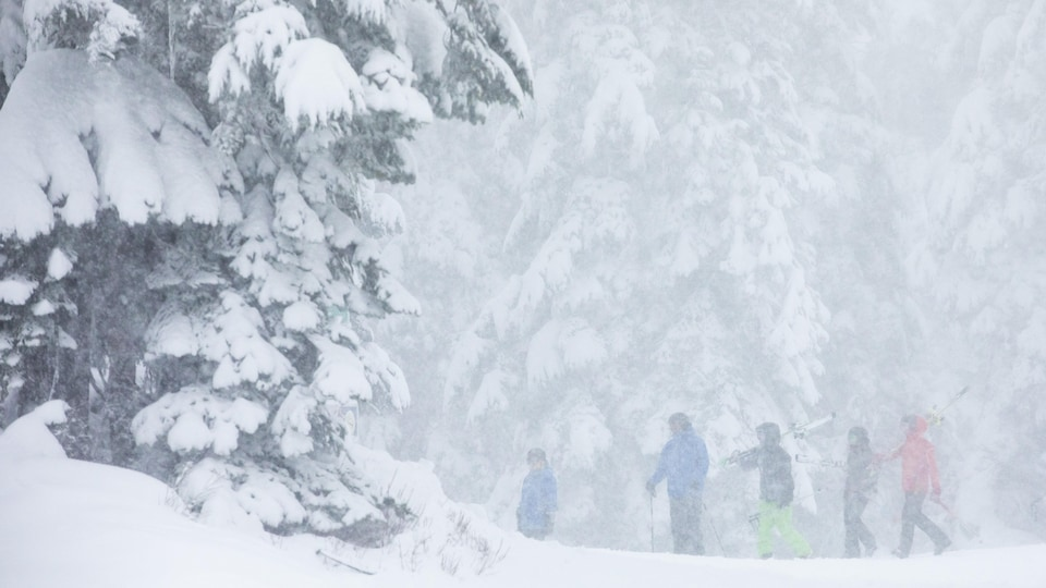 Des skieurs.