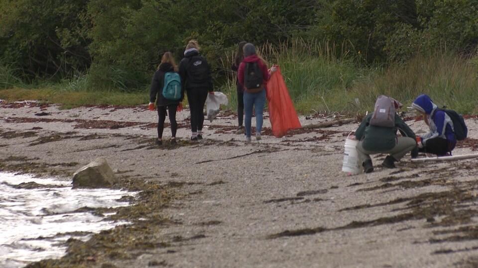 Des jeunes se promènent avec des sacs et des chaudières pour mettre les déchets ramassés sur une plage.
