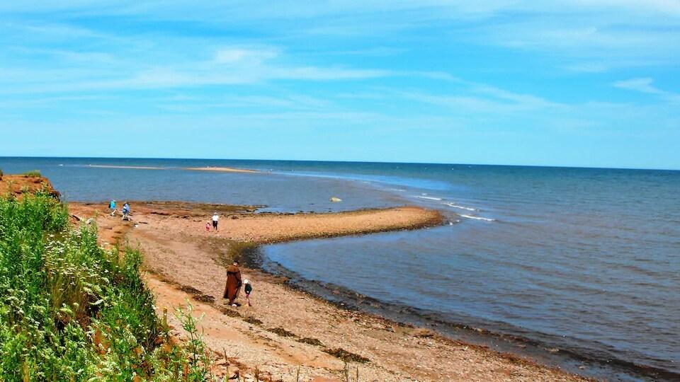 Quelques personnes marchent sur une plage de sable et de galets