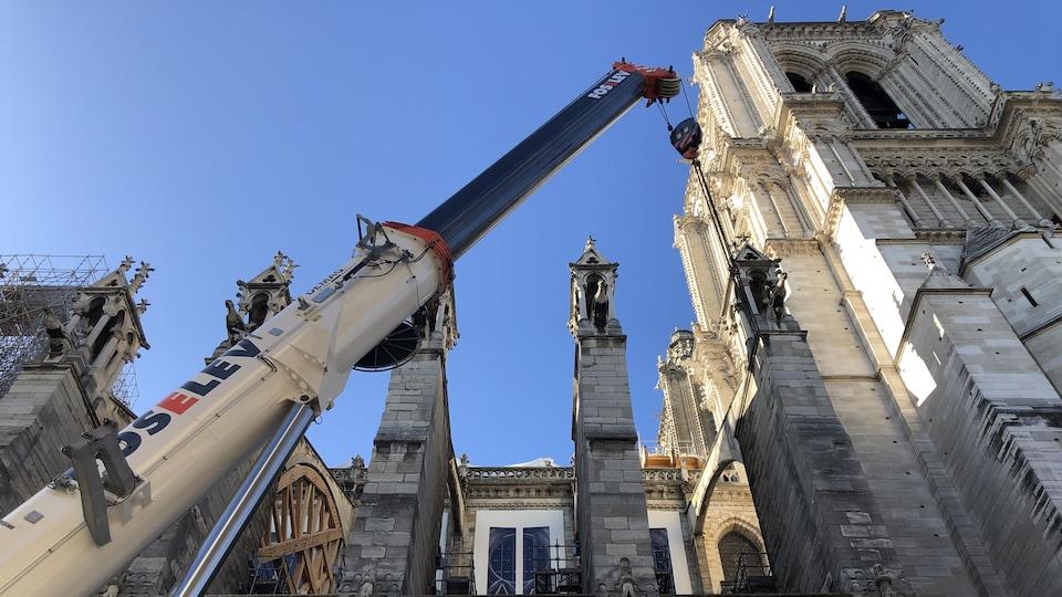 Une grue à côté de Notre-Dame.