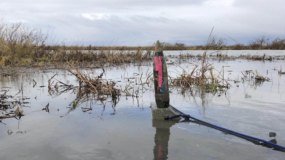 Un obus retiré du lac St-Pierre par les pêcheurs de la Défense nationale trône sur un morceau de ciment et est traîné par une corne.