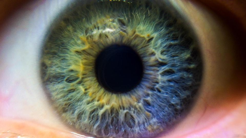 Gros plan sur un oeil humain.