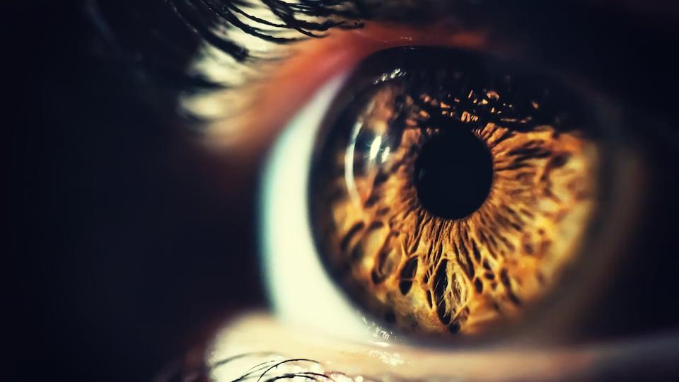 Un gros plan sur un oeil humain.
