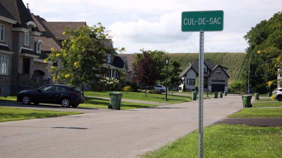 Une rue de banlieue avec des maisons et des pelouses gazonnées.