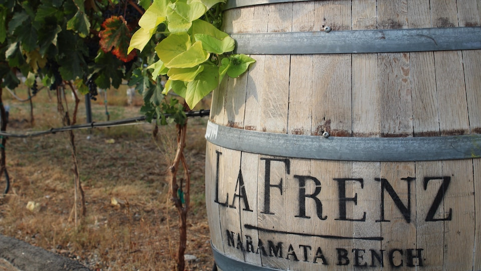 Un tonneau à vin dans un vignoble.