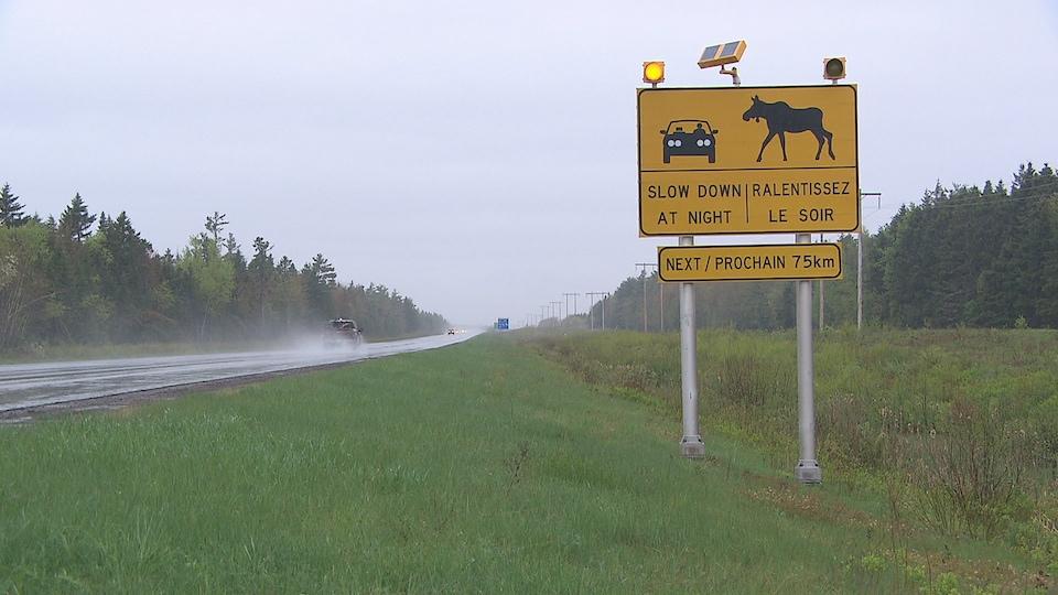 Un panneau d'autoroute montre un orignal et une voiture, avertissant de ralentir le soir.