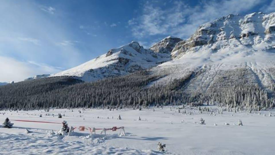 Le sommet de Bow sur la promenade des glaciers dans le parc national Banff.
