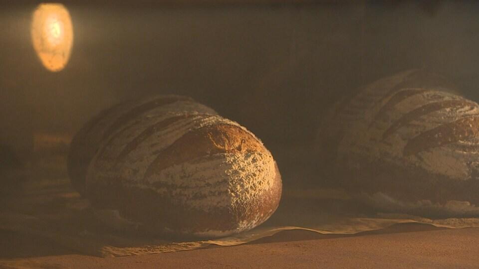 Un pain dans un four