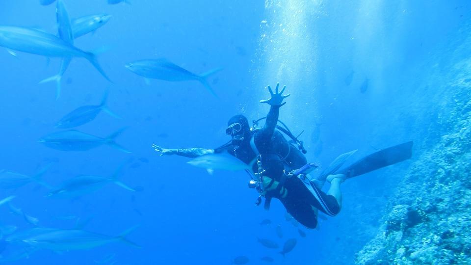 Un plongeur vêtu d'une combinaison sous l'eau