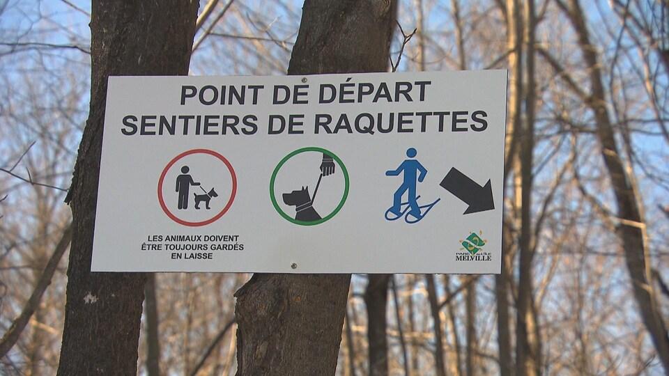 Une pancarte montrant que les animaux doivent être tenus en laisse, sur un arbre.
