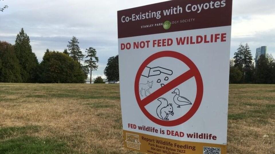 Un panneau dans le parc Stanley décourage les gens de nourrir les animaux sauvages.