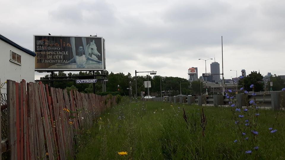 Ce panneau publicitaire situé en bordure de l'autoroute Laurentienne accueillera une affiche de Québec solidaire.