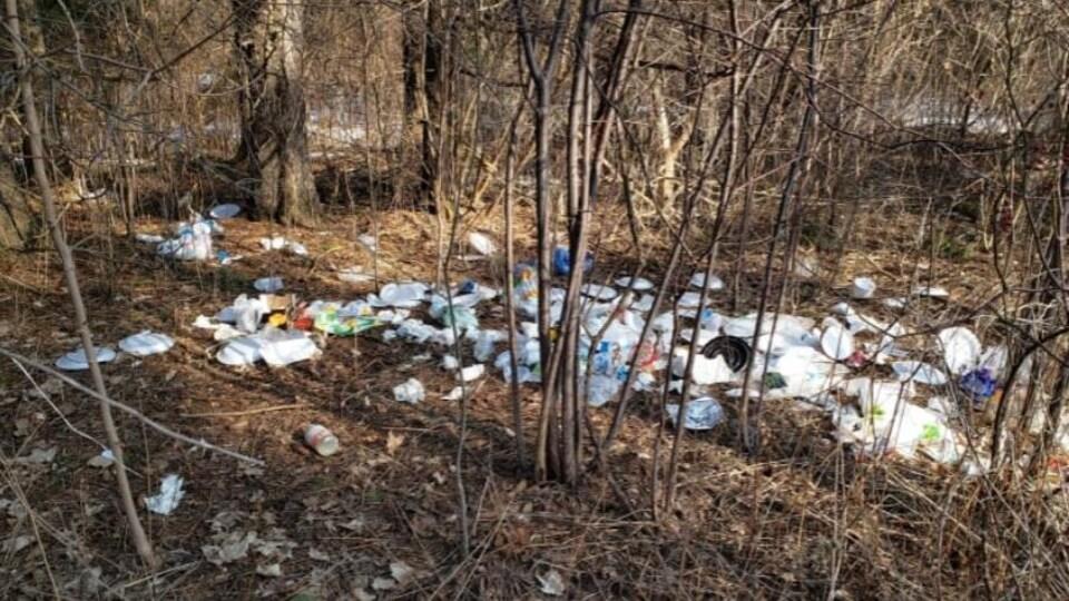 Des déchets dans un parc.