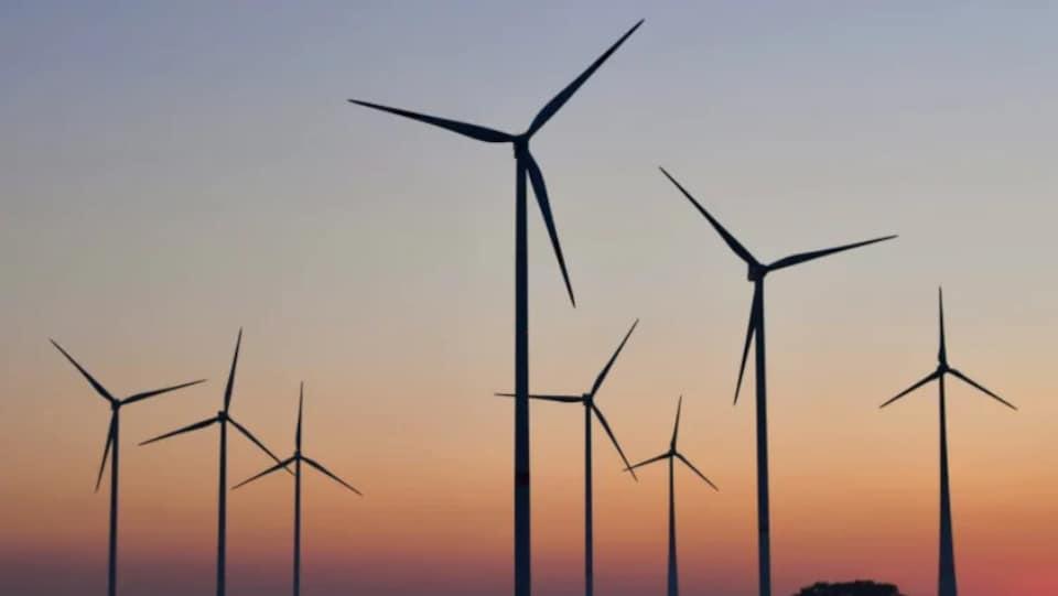 Un parc éolien à l'aube.