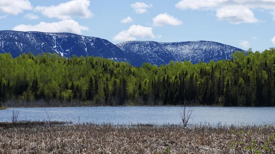 Parc de la Gaspésie vu du lac Neuf