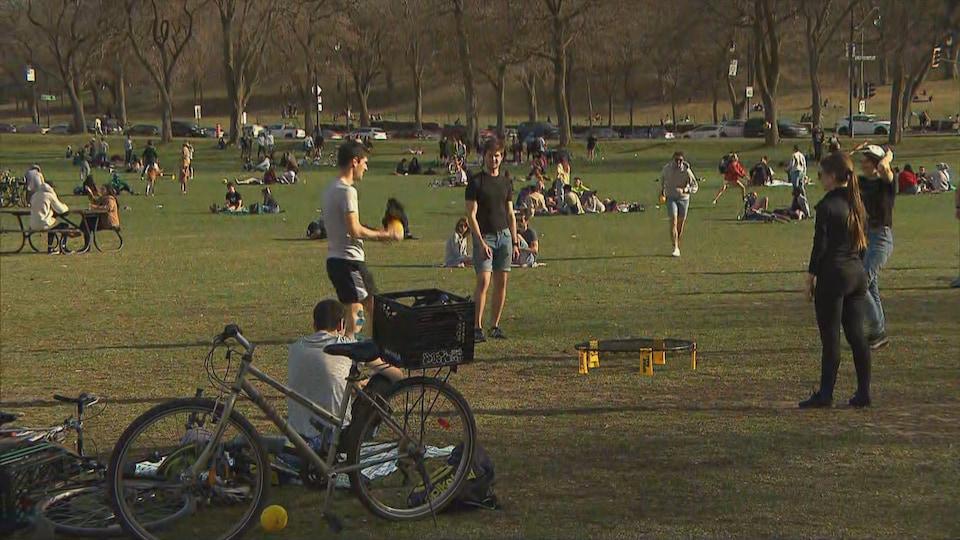 Les gens sont assis sur le gazon ou jouent à des jeux de groupe.