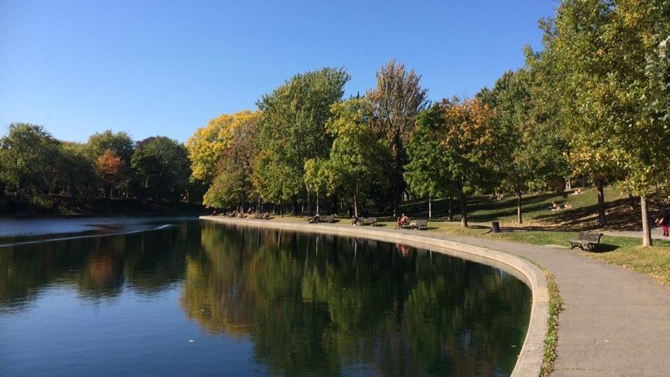 Partie d'un étang et plusieurs bancs autour de ce point d'eau, avec des arbres en automne.