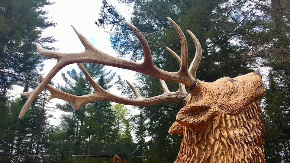 Un orignal sculpté dans du bois