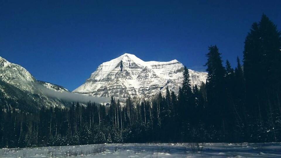 Une montagne enneigée en arrière-plan et à l'avant, un champ enneigé et des sapins.
