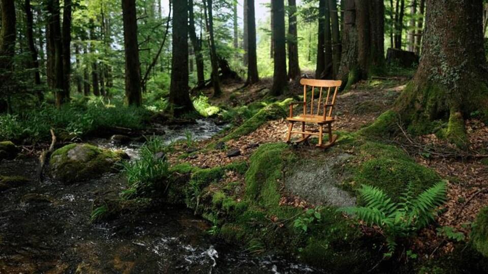 La compagnie de recherche et de création théâtrale Les Incomplètes propose un parcours déambulatoire le long du Sentier de la Cédrière du Parc naturel régional de Portneuf.