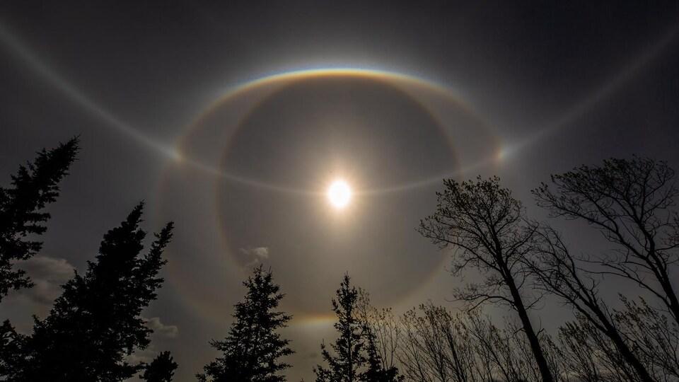 Le soleil entouré de halos lumineux.