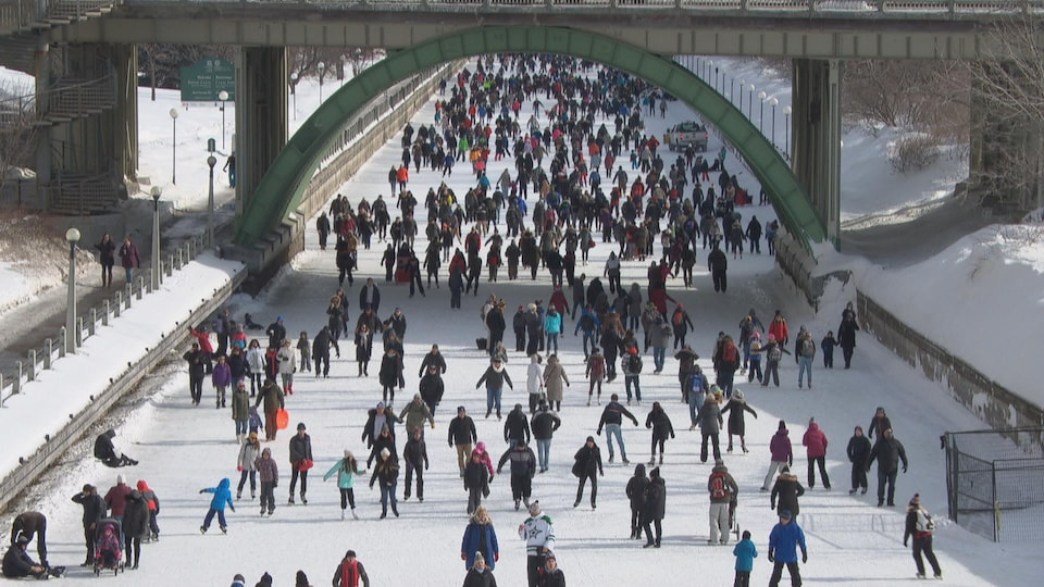 Des dizaines de gens patinent sur le canal Rideau.
