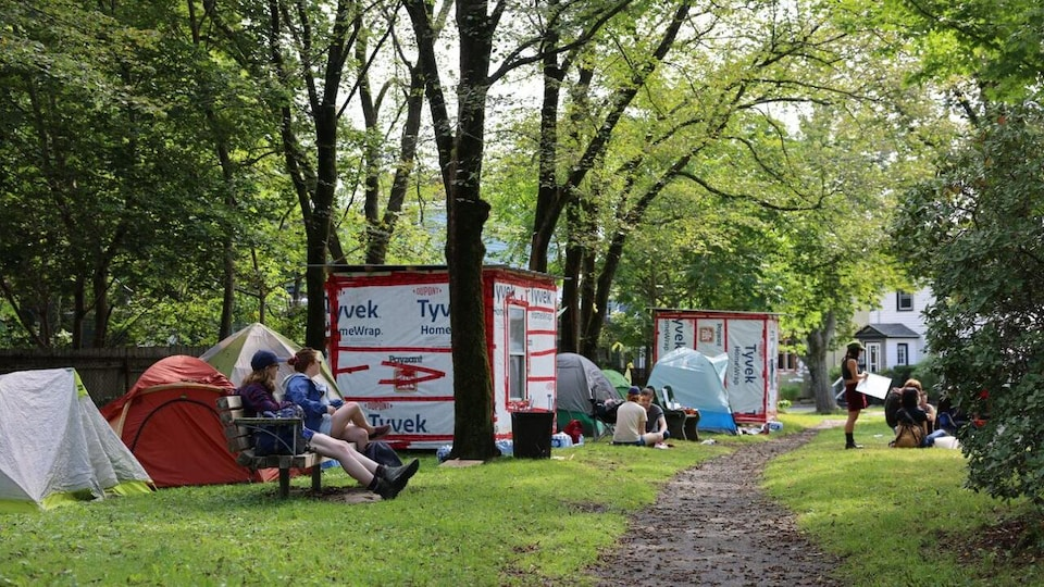 Des cabanes et des tentes dans un parc municipal.