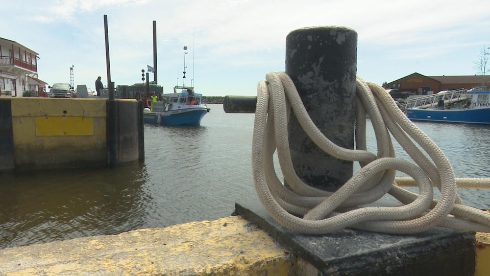 Ropes on a mooring line