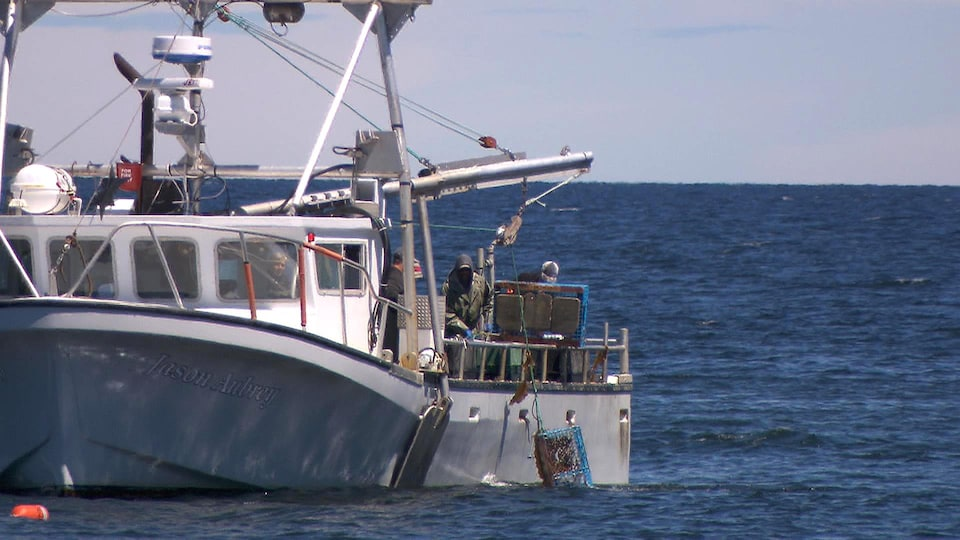 Pêcheurs de homards relevant des casiers
