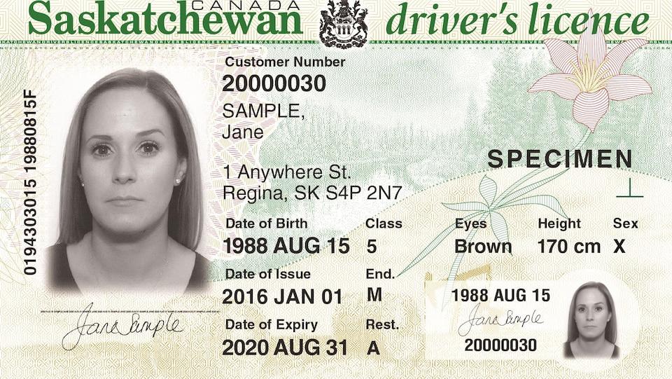 Un permis de conduire de la Saskatchewan avec un X pour indiquer le genre.