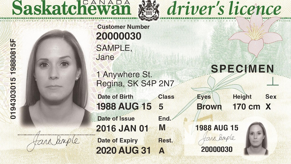Un permis de conduire de la Saskatchewan.