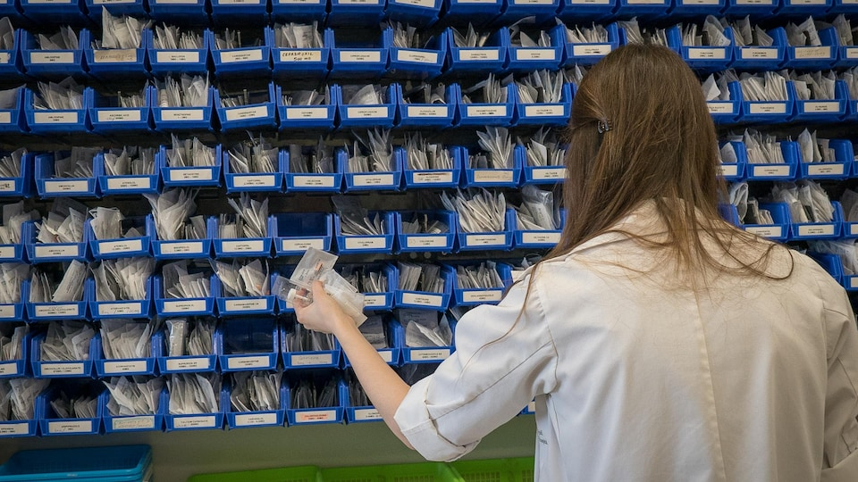 On voit, de dos, une employée d'un hôpital qui cherche des médicaments dans les casiers disposés sur le mur de la pharmacie.