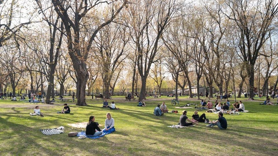Des gens assis par terre sur le gazon, dans un parc avec de très grands arbres matures.
