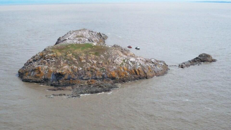 Vue aérienne de la petite île au sol rocheux