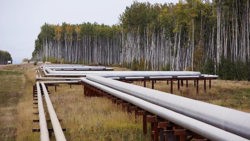 Un pipeline près de Fort McMurray, en Alberta