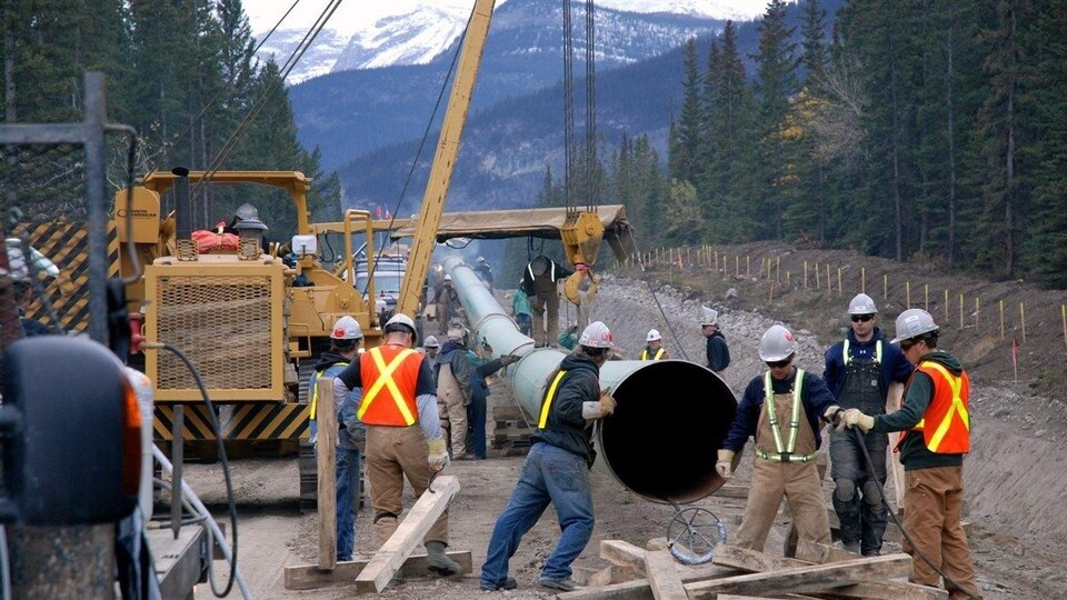 Des travailleurs installent un grand pipeline dans une forêt avec des montagnes en arrière-plan.