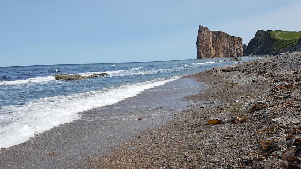 Une plage sur laquelle gît du varech, balayée par les vagues.