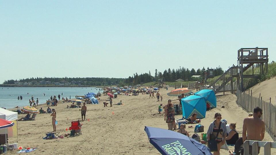 Des touristes en maillots de bain et des parasols sont dispersés sur le sable près de la mer.