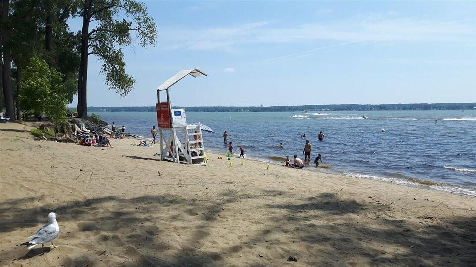 La plage de l'île Saint-Quentin à Trois-Rivières.