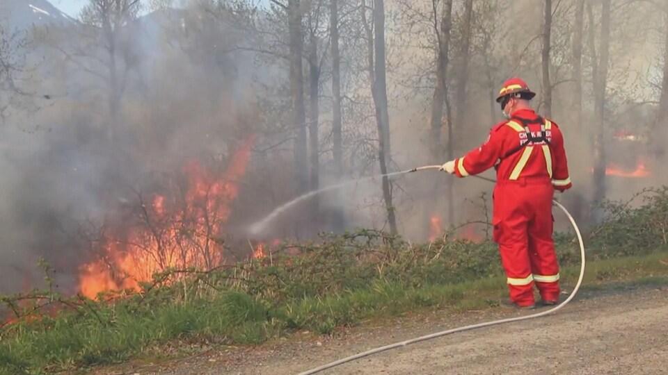 Un pompier tente d'éteindre un feu de forêt au bord d'une route avec un tuyau rempli d'eau.