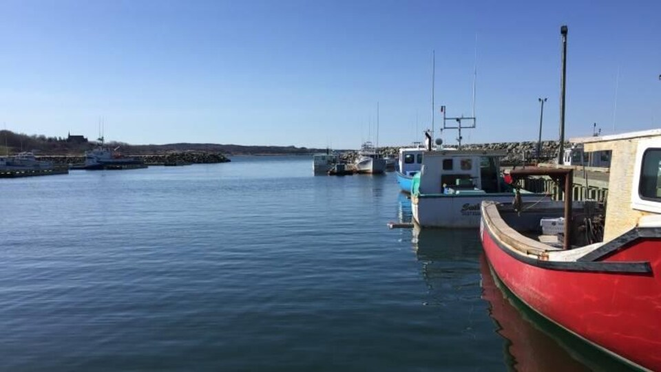 Des bateau de pêche côtière amarrés à un quai