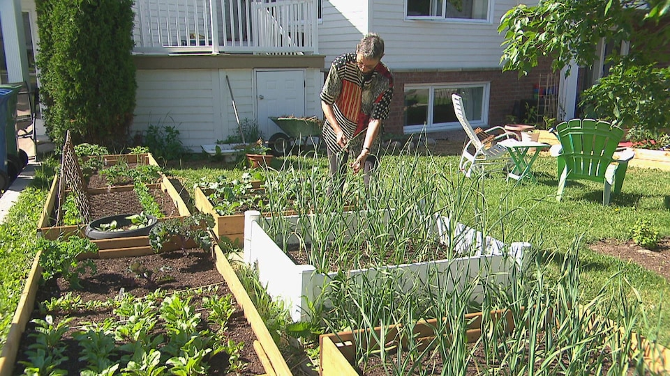 Une femme cultive dans son jardin