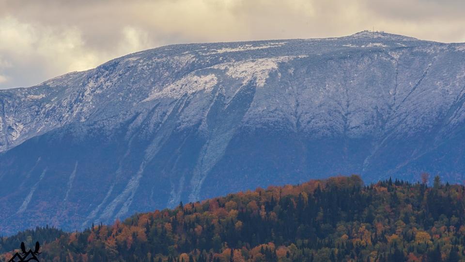 La période de l'année où l'automne côtoie l'hiver