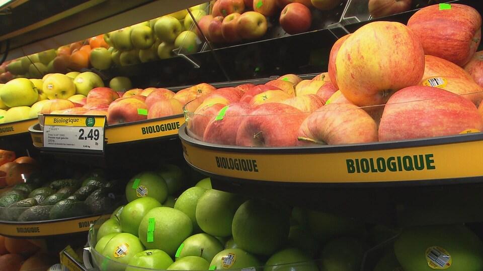 Un étalage de pommes biologiques au supermarché Metro de Rimouski